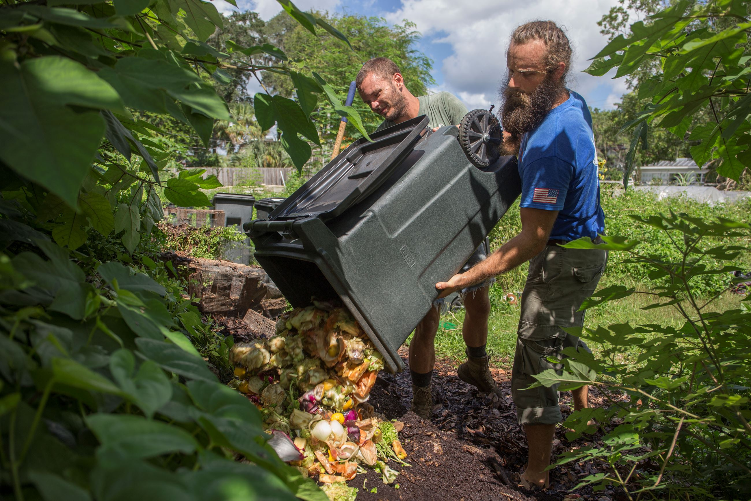 Food waste being dumped for composting_UF.IFAS_Camila Guillen
