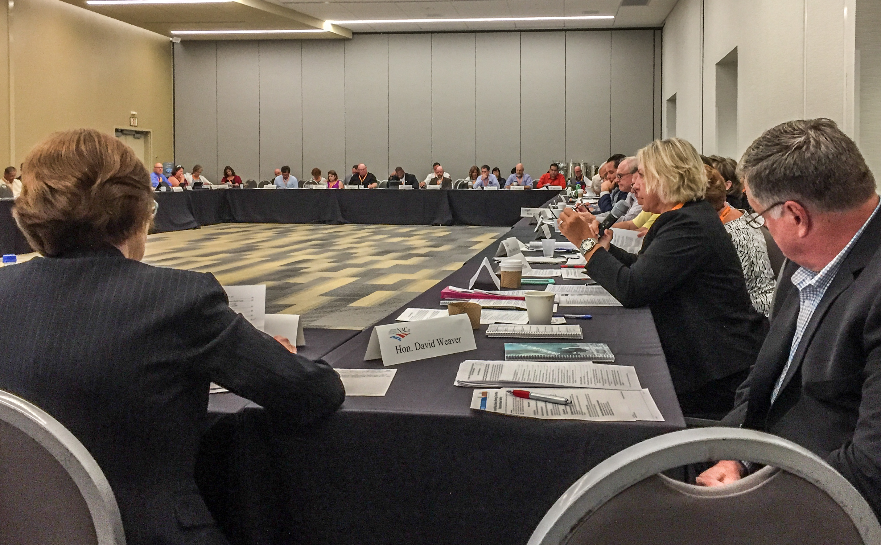 Heather Carruthers explains NFIP Resolution at NACo Conference 2017-2.jpg